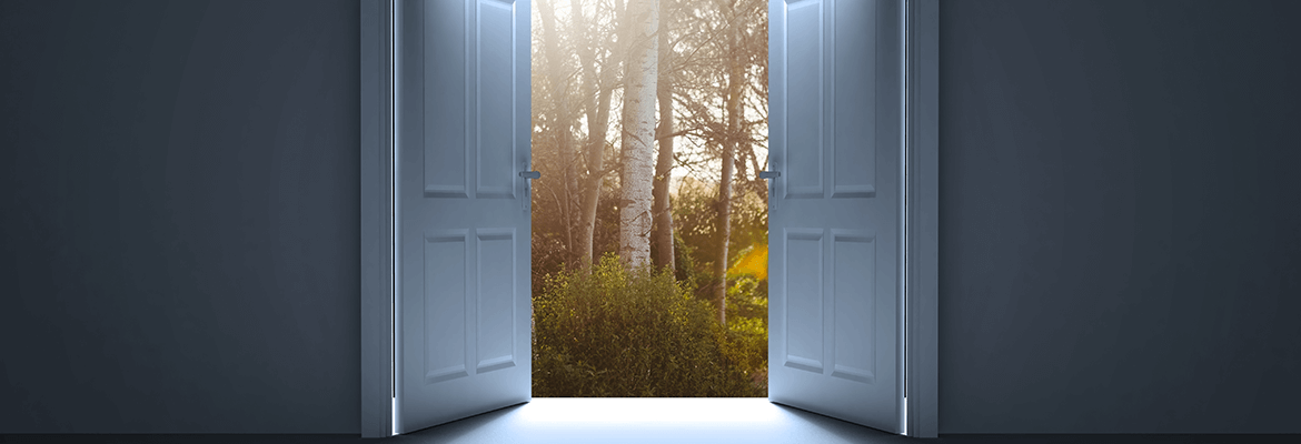 Doors opening Into A Forest